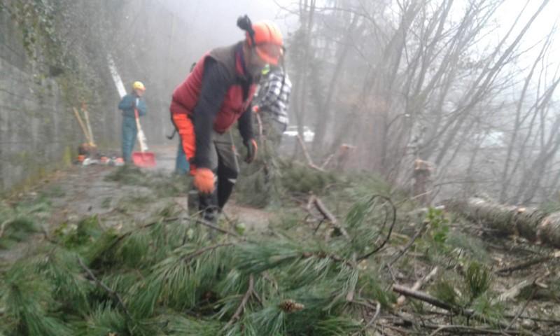 gruppo antincendio alpini monte medale