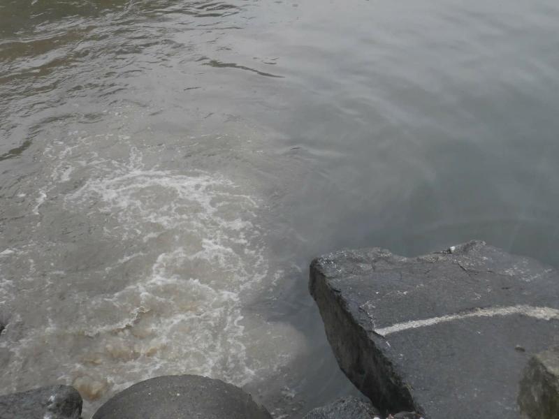 depuratore lecco scarico lago