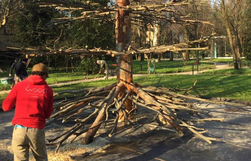 3Dwood Orto botanico lavorazione Padova De Lucchi