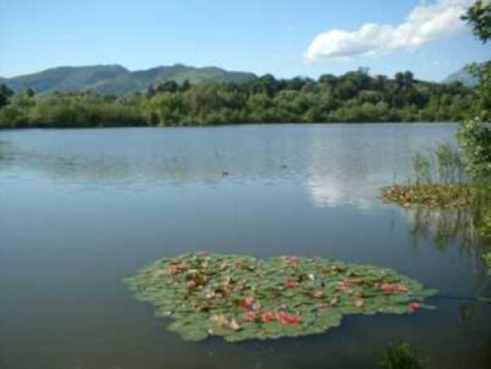 riserva lago di Sartirana