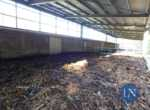 Open Day Silea Impianto di compostaggio di annone