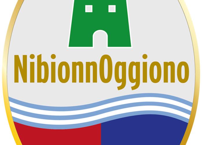 logo stemma nibionnoggiono