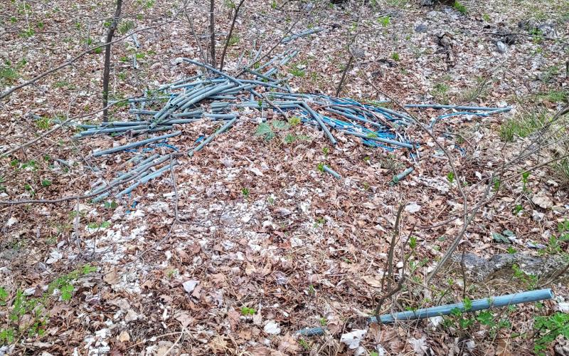 materiale elettrico rifiuti bosco strada morterone