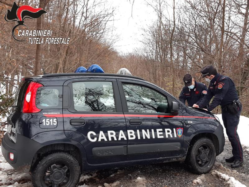 Carabinieri Forestali Scuole