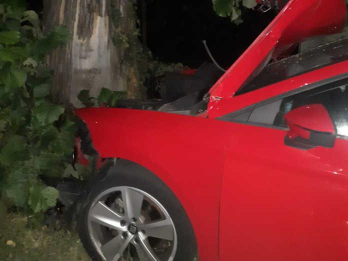 Monticello incidente 3